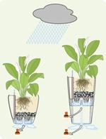 Pflanzgefäße mit Bodenschraube