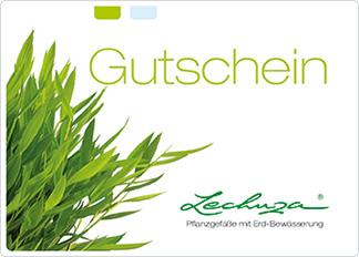 Gutscheinvorlage grün