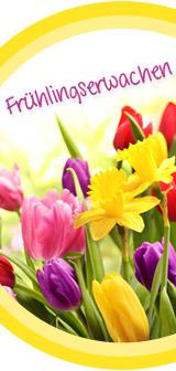 Dekotipps für den Frühling mit LECHUZA